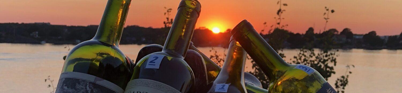 vinprovning - vin och mat - vinkunskap